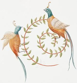 16 motif oiseau paon